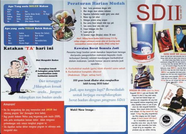 SDII Brochure